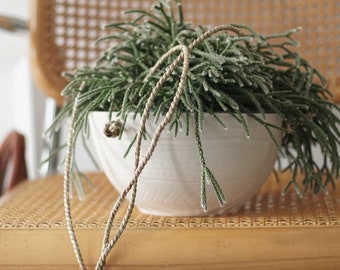 Carved Bowl Hanging Planter