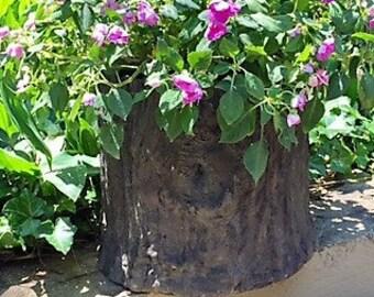 Concrete Faux Bois Planter