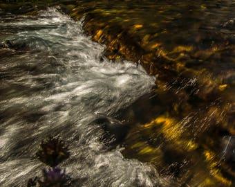 Fall Creek Falls Log