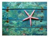 Weathered Wood Print, Rustic Decor, Starfish Art, Turquoise, Old Painted Wood, Beach House Decor, Beach Wall Art, Coastal Art, KORPITA