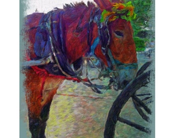 New Orleans Art, French Quarter Art, Carriage Mule Print, Mule with Flowers, French Quarter Scene, NOLA, Mule named Elvis, KORPITA