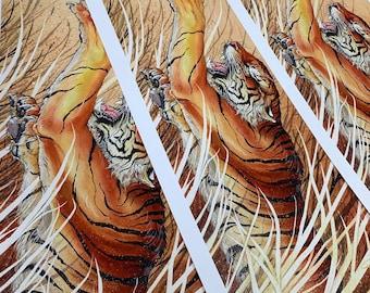 Quarry Tiger Print