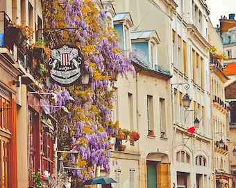 Parisian Side Street-Paris,France,Fine Art photo,multiple sizes available, Architecture,Landscape,Parisian, Floral, City Life,Buildings