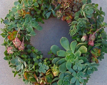 Free Shipping, 11 inch DIY Wreath, Mothers Day Gift, Christmas, Holidays, Birthday