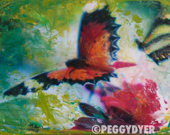 Butterfly   ORIGINAL   Mixed Media Encaustic Color Photo   Nature   Animal Art