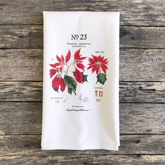 Poinsettia Botanical Tea Towel Etsy