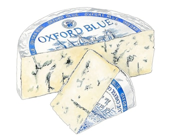 Oxford Blue Cheese Drawing, Giclée Print, Cheese illustration, Kitchen Art, Food print, Pen and Ink.