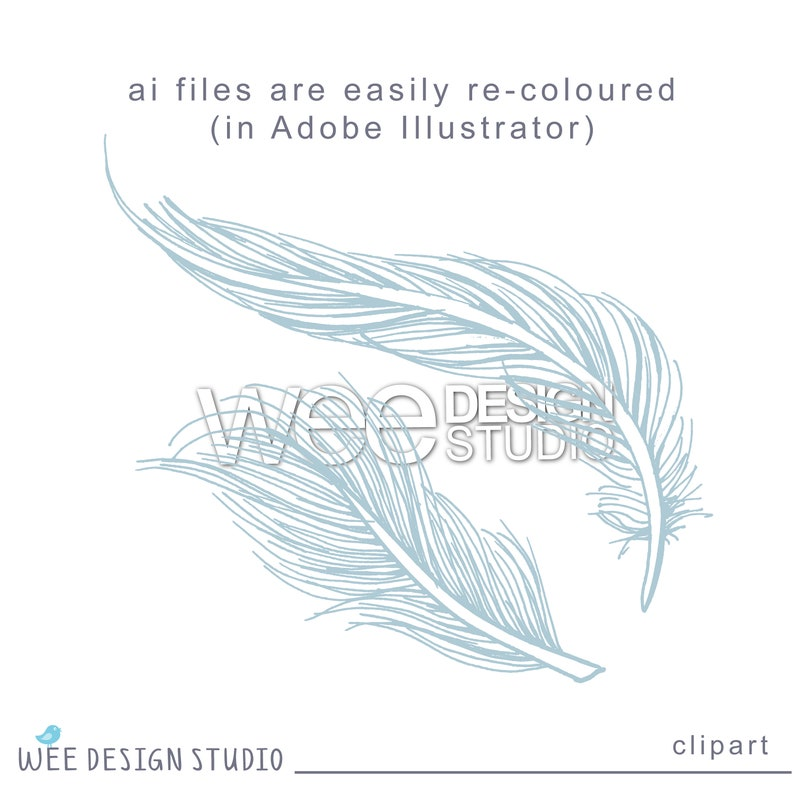 Personal Or Commercial Use Png Jpeg Eps Feather Digital Clipart Graphics