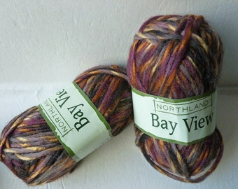 Yarn Sale  -Autumn Mix Bay View  by Northland