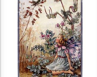 Victorian Fairy Flower Fantasy Print Picture Girl Bedroom Child Baby Nursery Playroom Garden Antique Wall Art Home Decor Storks Bill bf 312