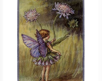 Flower Fairy Victorian Print Fantasy Picture Girl Bedroom Child Baby Nursery Bedroom Playroom Garden Antique Wall Art Decor Scabious bf 300