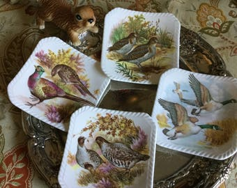 Set of Four Beautiful Bird/Fowl Royal Adderly Bone China Coasters