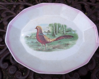 Antique Henri Daudin Colorful Pheasant Bird Turkey/Meat/Serving Platter-Sebring Pottery Company 1920