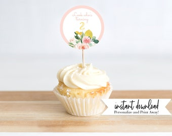 Customizable Lemonade Birthday Party Cupcake Toppers or Stickers, Pink Lemonade Birthday, Lemonade Stand Instant Download [id:4270197]