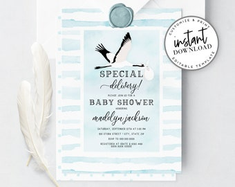 Special Delivery Stork Baby Shower Invitation, Cute Boy Baby Shower Invite Template, Bird Baby Shower Instant Download [id:4325116,4325128]