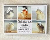 Nurse Gift Chicken Postcard Set Chicks in Nursing Hats Bird Photo Postcards 4x6 (10)