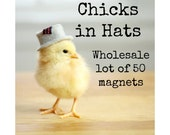 50 Chicks in Hats Rigid Rectangle Magnets Chicken Photography Heavy Chickens Magnets Wholesale Lot