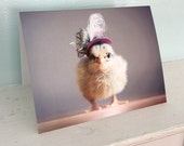 Greeting Card Chicks in Hats Photo Card Chicken Wearing A Miniature Feather Hat Baby Animals