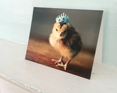 Chicken in A Miniature Crown Folded Photo Card Chicks in Hats Stationary Baby Animal Photography