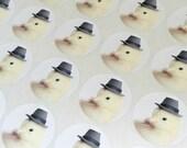 """Chicks in Hats Stickers Chicken in A Pilgrim Hat Stickers Seals 1.5"""" Round (12) Baby Animals Labels"""