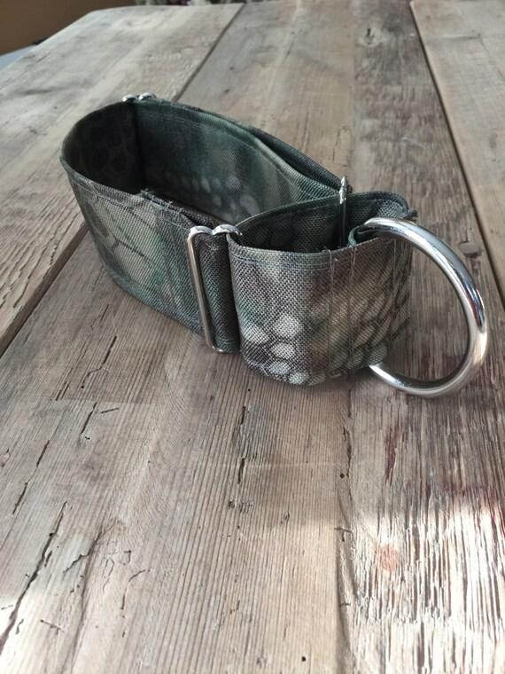 Dog Collar, Martingale Dog Collar, Kryptic Fabric Dog Collar