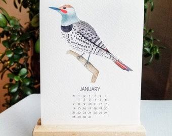 2022 Desk Art Calendar 5x7 - Pacific Northwest Birds - Watercolor Art - with Wooden Stand (optional)
