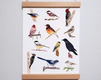 Birds 2.0 - Pacific Northwest - Watercolor Art PRINT - multiple sizes
