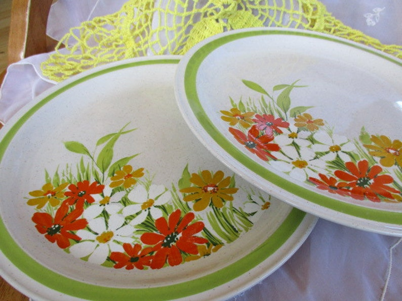 Four Season DaisylandS Imported  Stoneware Dinner plates Set of 2 good to very good with minor utensil marks China Galore retro kitchen