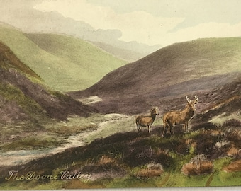 The Doone Valley Vintage postcard, Lorna Doone, Worth's series, Exmoor landscape, Deer Stage Valley Mountains Un posted
