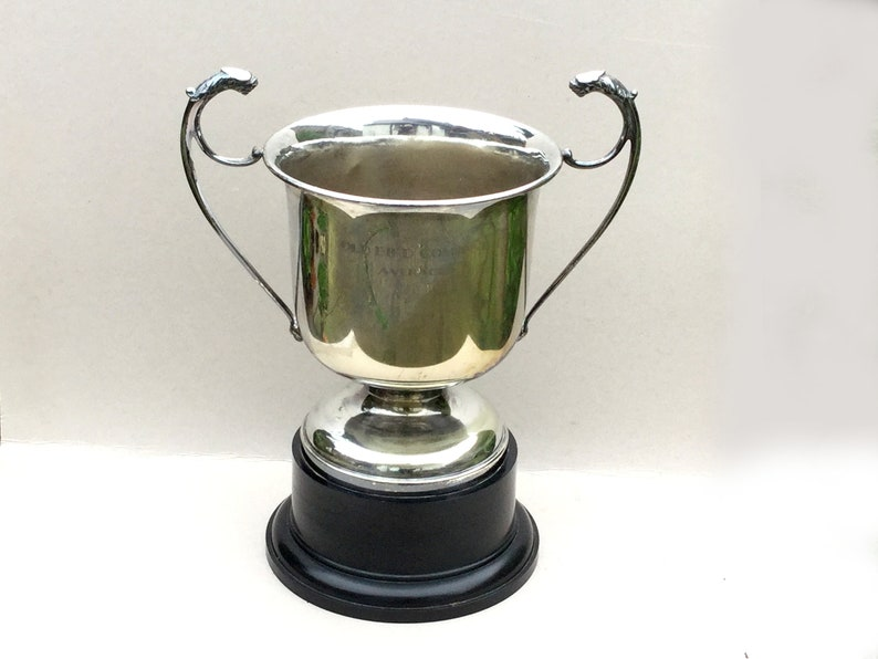 Silver plated trophy cup, Extra large, Lion head handles, Big loving cup,  Home decor display, Silver plate sporting trophy, Bird sports