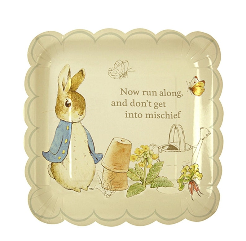 Peter Rabbit Bunny Easter Party Plates and Napkins Beatrix Potter Spring Party