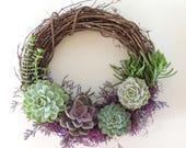 Special Occasion Succulent Wreath 14 quot Diameter