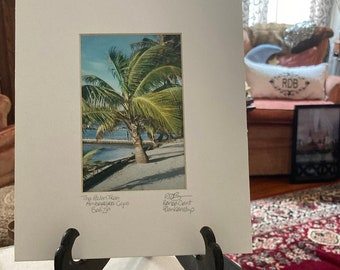 Belize Palm Photo Matted and Signed Photo