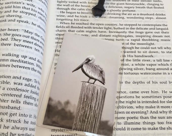 Pelican Bookmark - Fauna - Book Lover Gift - Bibliophile - theRDBcollection