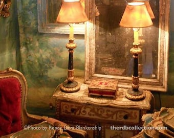 In My French Parlor Photograph