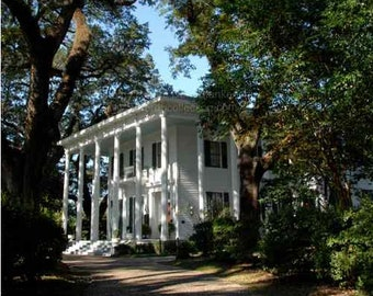 Southern Historic Home - Bragg Mitchell Mansion Photograph