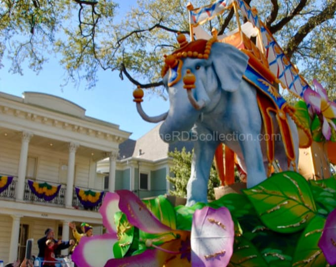 Featured listing image: Mardi Gras Elephant Parade Float Photograph