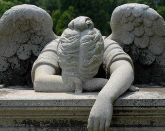 Weeping Angel Photograph