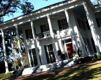 Bragg Mitchell Mansion Photo - Mobile Alabama