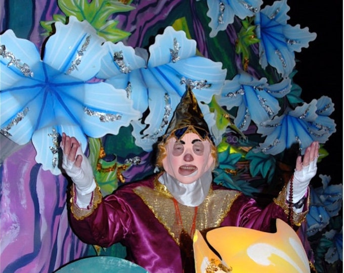 Mardi Gras Masked in Blues and Purple Photograph