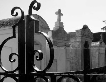 Through the Gate • Lafayette Cemetery
