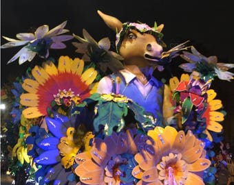 Midsummer Night's Dream Donkey Photograph