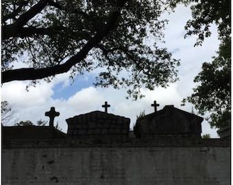 Three Tombs under an Oak Photograph