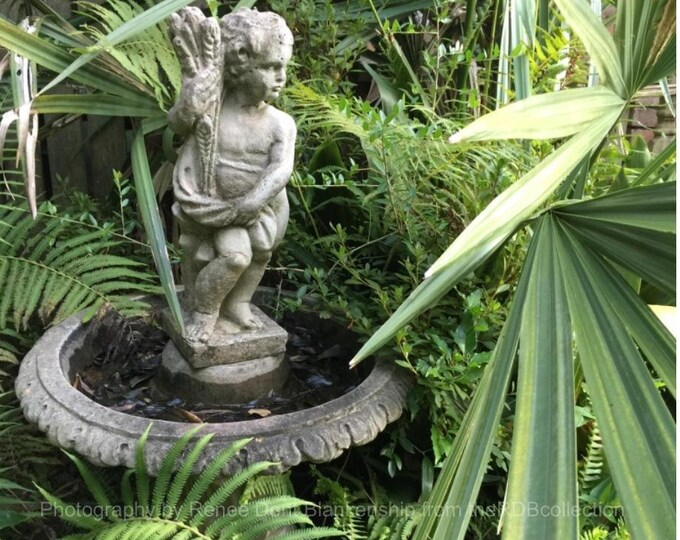 Birdbath Among the Fronds Photo - Southern Photography - Victorian Garden - Ferns and Fountain  - theRDBcollection - Renee Dent Blankenship