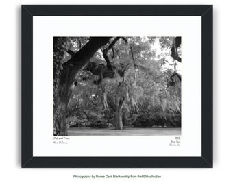 Oak and Moss Framed Fine Art Photograph • theRDBcollection