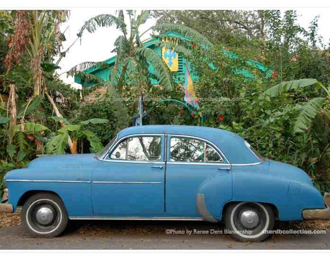 Blue Car and Banana Trees Photograph