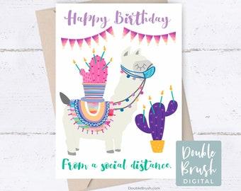 Printable Funny Birthday Card Social Distance Card, Cactus Llama Card Instant Download Birthday Card, Happy Birthday Quarantine Card CSD009