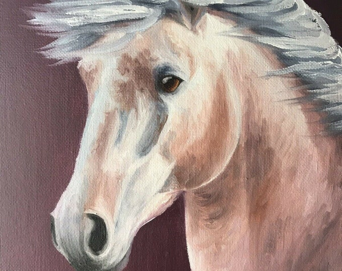 Original horse oil painting Nicolae Equine Art Andalusian horse Nicole Smith Artist 8x10