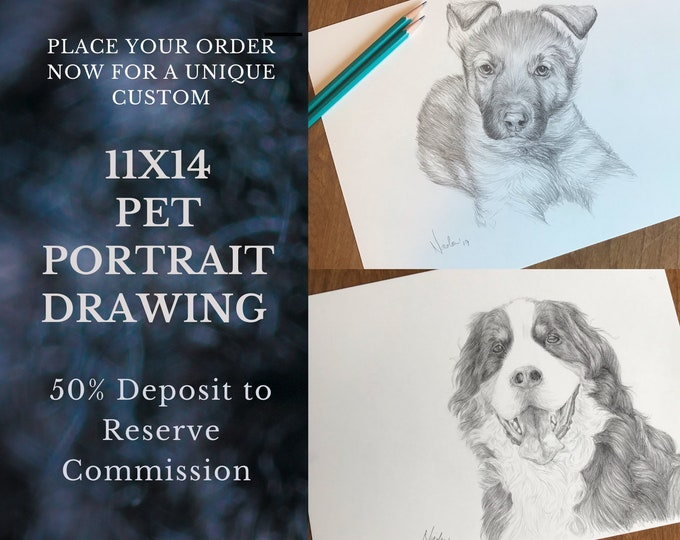 Pet portrait drawing 11x14 50% inital deposit to reserve commission