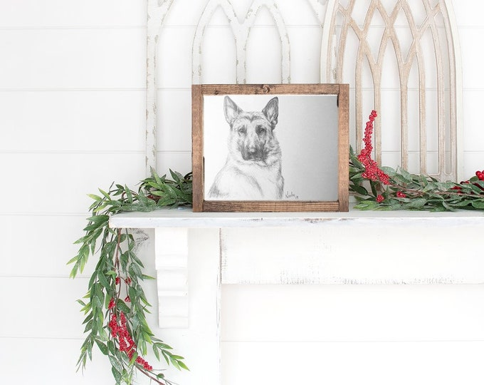 Original German Shepard dog pencil drawing Nicolae Art pet artist Nicole Smith sketch 8x10